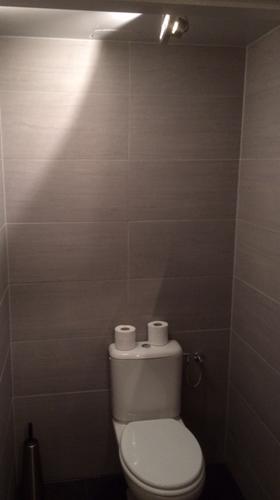 Toilet-verbouwing-6